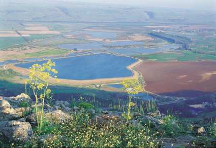 A view of the Land of Israel